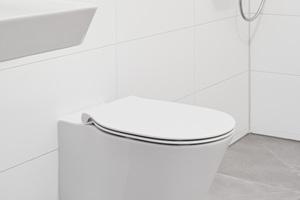 """Die WC sind mit der """"AquaBlade""""-Spültechnologie ausgestattet.<br />"""