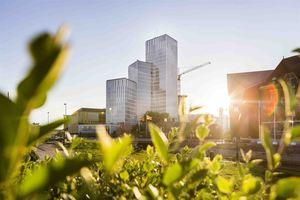 Caverion führt das Energiemanagementsystem nach ISO 50001 ein.