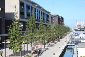 """Im neuen Wohn- und Einkaufskomplex """"Quartier Bleu"""" im belgischen Hasselt haben die verantwortlichen Stadtplaner auf das Wurzelkammersystem Wavin-""""TreeTank"""" gesetzt."""