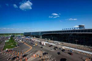 Die Wolf GmbH hat einen Großauftrag am Flughafen Moskau-Domodedowo erhalten