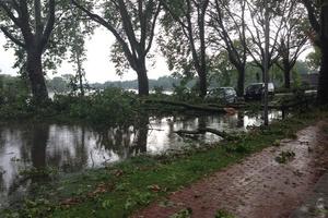 Wasser auf der Straße, umgestürzte Bäume, Äste und Laub auf dem Fußgänger- und Fahrradweg – auch am Aasee zeigte sich ein Bild der Verwüstung.